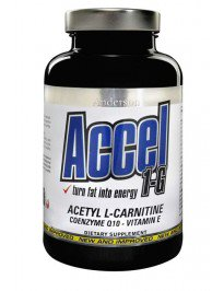 accel-1-g-001_4