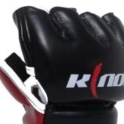 KN008_5-498×417